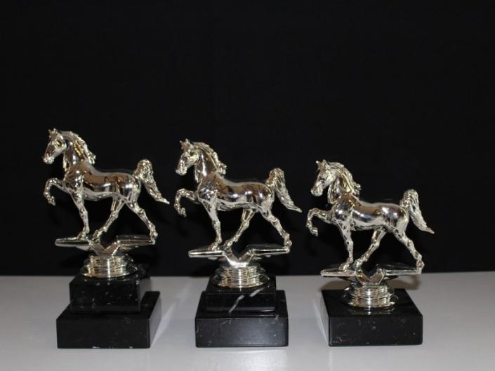Trofee-Tuigpaard-17-19-en-21-cm
